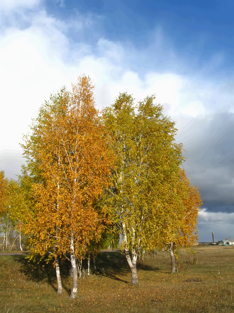 Погода в челябинске на октябрь 2016 года